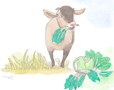 「第三章 女性牛飼いの章⑥」~草を食べなくなったヤギ~