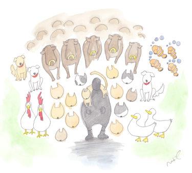 「第三章 女性牛飼いの章」~動物の楽園~