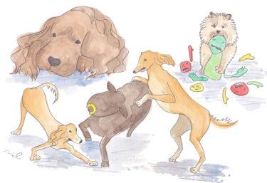 「第三章 女性牛飼いの章⑦」~かわいいワンコが狂犬に変わる時~
