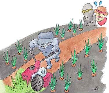 「第四章 ブラック系?農業法人の章⑦」~除草作業と1人のおじいさん~